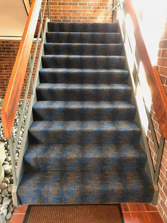commercial carpet job wheeling